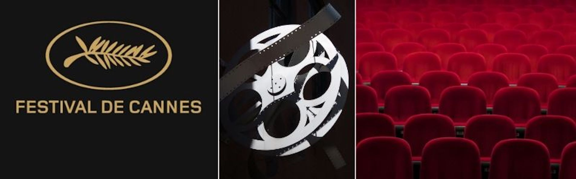 Saturday 30th May – 🎬 Cannes Film Festival Movie Trivia Quiz 🎞️ (MEMBERS ONLY)